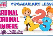 تعليم الأرقام الانجليزية للأطفال بالصوت والصورة