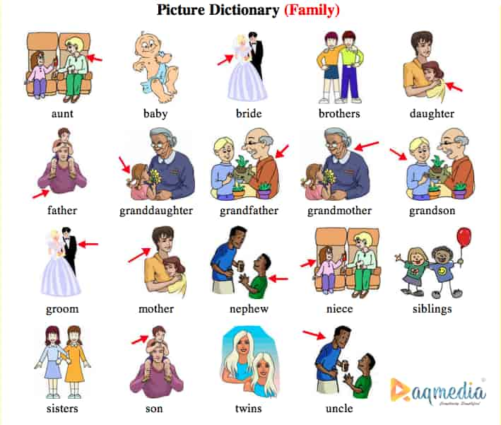 talking-about-your-family-in-pictionary-1