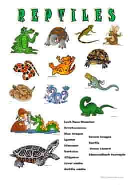 ESL-EFL-downloadable-printable-worksheets-practice-exercises-and-activities-to-teach-about-reptiles-picture-dictionaries