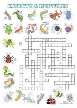 ESL-EFL-downloadable-printable-worksheets-practice-exercises-and-activities-to-teach-about-sea-animals-crossword-insects-and-reptiles