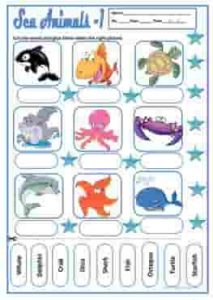 aquatic-animals-wordsearch-ESL-EFL-downloadable-printable-worksheets-practice-exercises-and-activities-to-teach-about-reptiles-picture-dictionaries_1-raqmedia.com