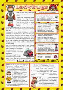 ladybugs-key-reading-comprehension-wordsearch_key-ESL-EFL-downloadable-printable-worksheets-practice-exercises-and-activities-to-teach-about-birds-picture-dictionaries