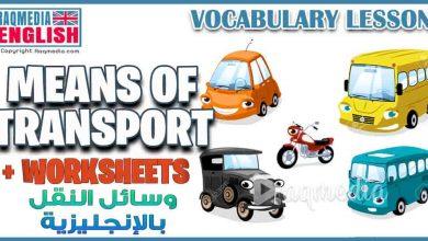 دروس في اللغة الإنجليزية: تعلم أهم مفردات وسائل النقل